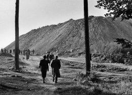 """Spaziergang auf den """"Monte Scherbelino"""" 2"""