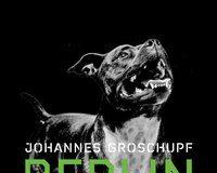 """Buchtipp von Susanne Martin: """"Berlin Prepper"""" von Johannes Groschupf"""